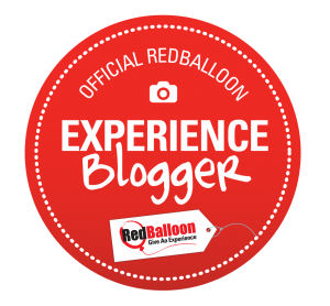 RB_blogger_badge_highres